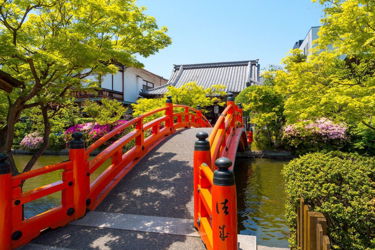 ourbedtimedreams:  皐月 - 神泉苑 / Shinsen-en Temple by Active-U on Flickr.
