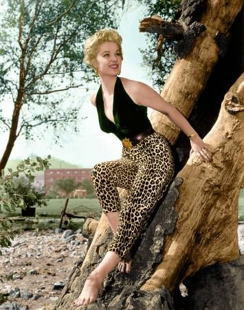 Up A Tree! by Robert Muensterman - Martha Hyer