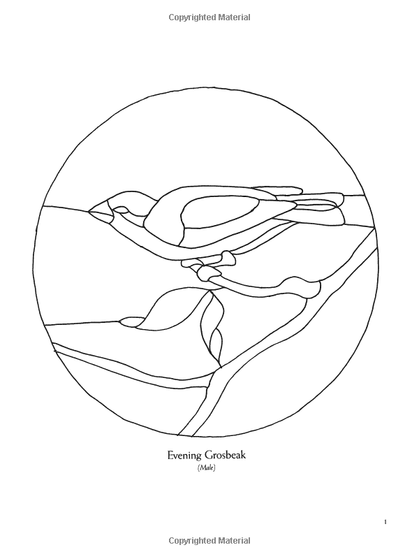 Amazon Com Audubon Birds Stained Glass Pattern Book 9780486286259