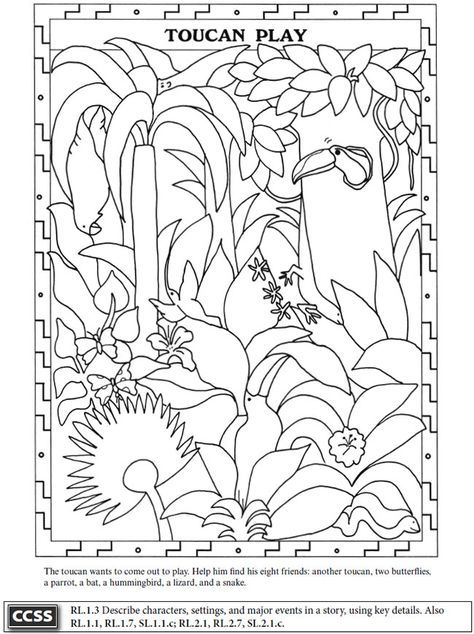 Marvelous Rain Forest Theme Worksheet And Coloring Page Toucan
