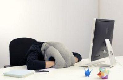 Para descansar, almohada avestruz, en unminutohoy.com