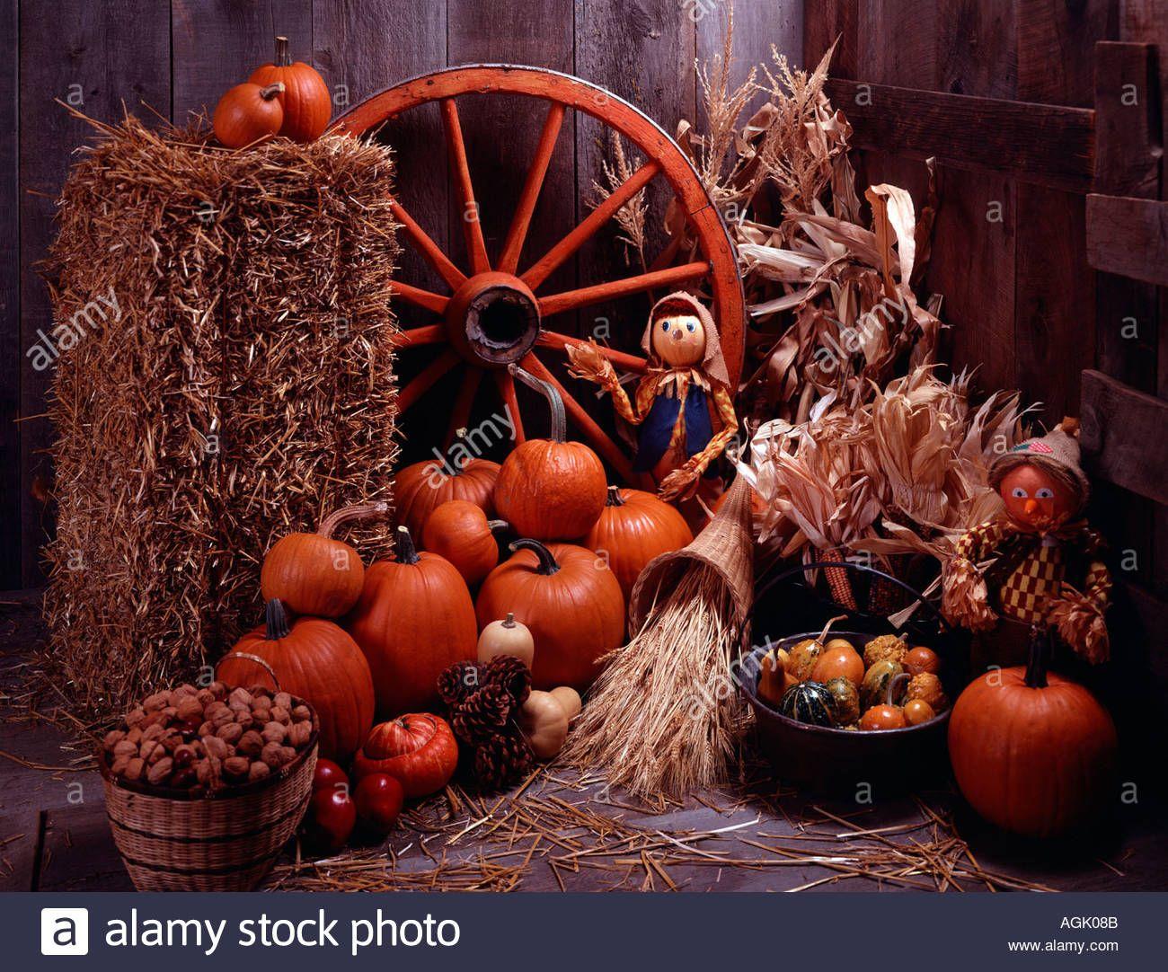 Image result for cornucopia | Thanksgiving decorations ...