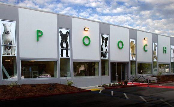Standard Dog Suites Luxe Pet Hotels Las Vegas Nv Doggie Pinterest Hotel And Stuff