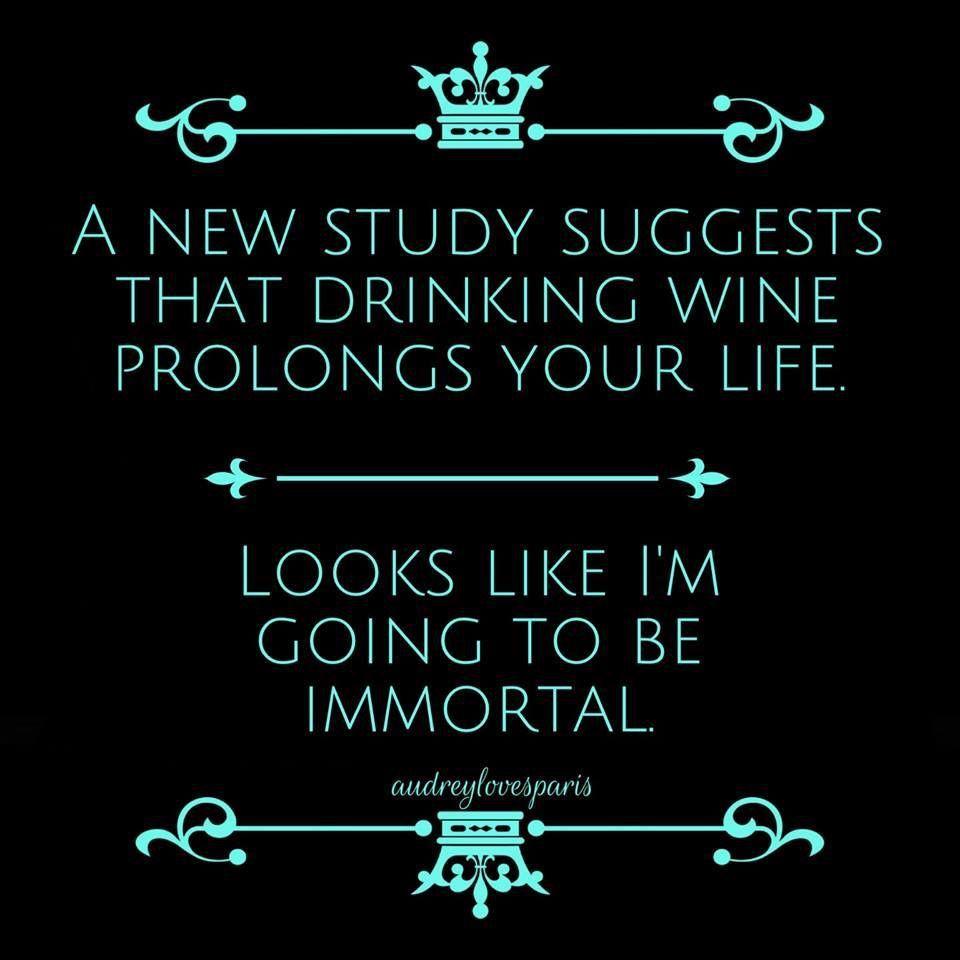 Haha Wine Jokes Wine Quotes Funny Quotes