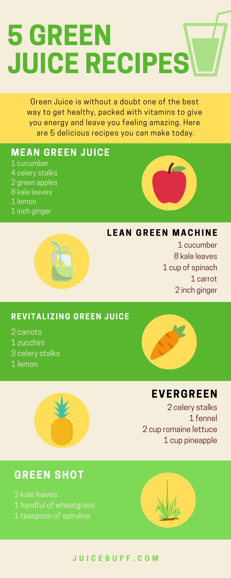 5 Green Juice Recipes Infographic