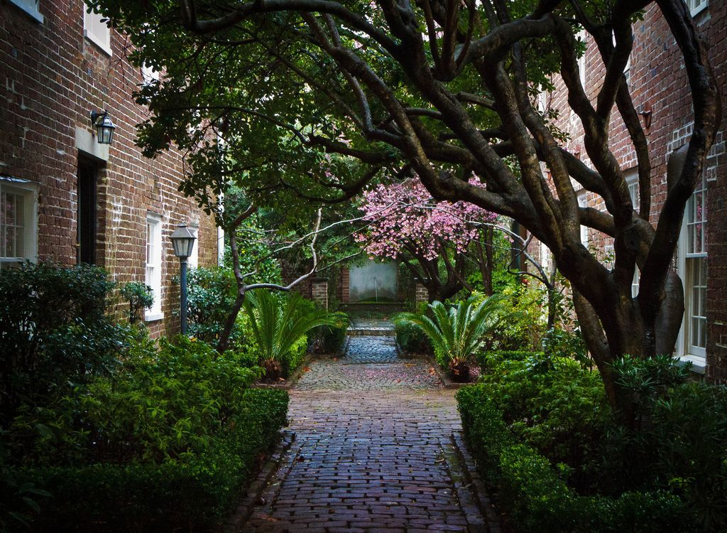 charleston courtyards - Google Search | Courtyards | Pinterest ...