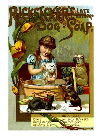 Bench Show New England Kennel Club Dog Show Vintage Style Poster 20x28