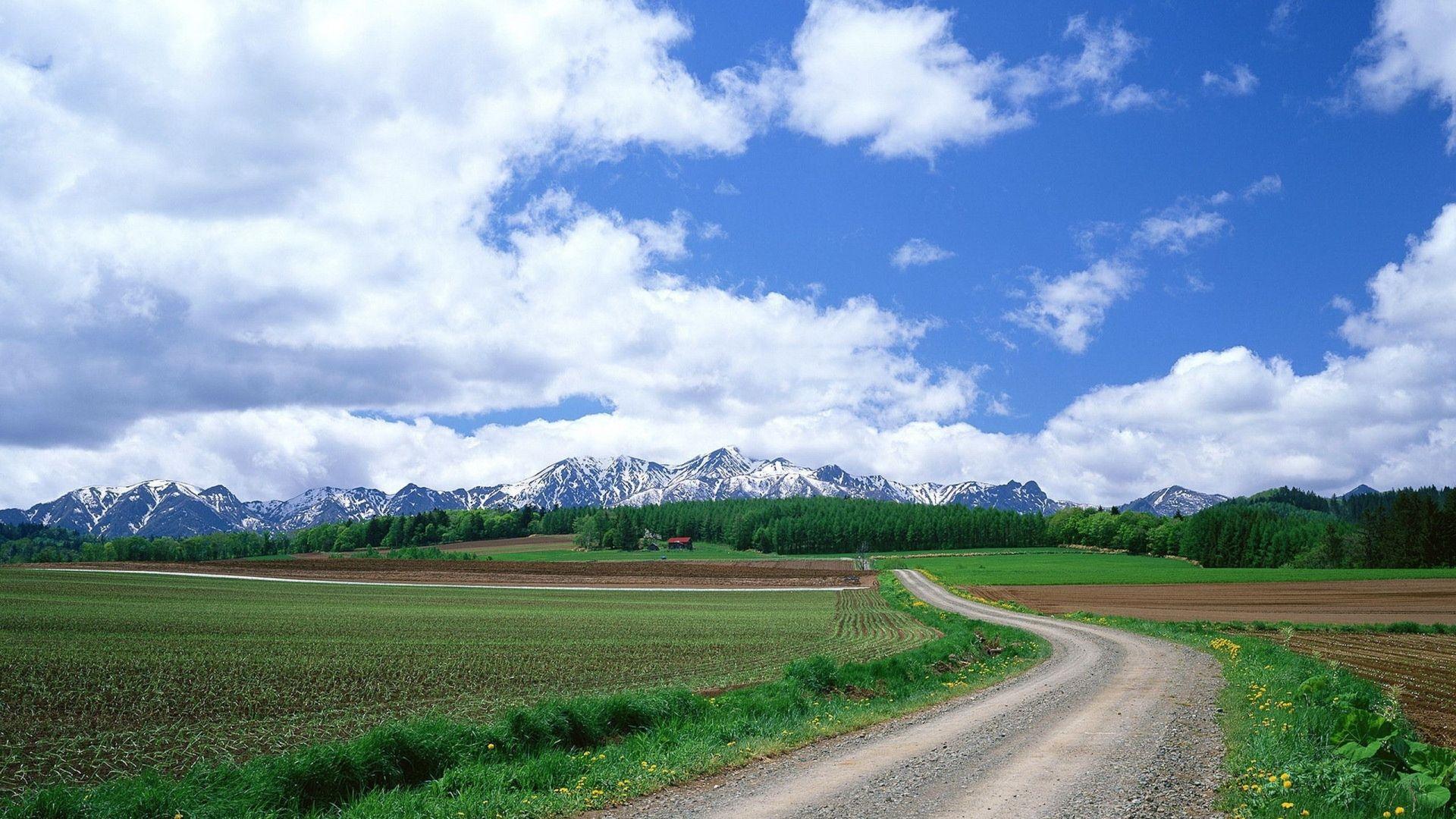 1920x1080 Wallpaper Field Summer Grass Mountains Beautiful Landscape Wall Art Tree Mountain Wallpaper Mountain Wallpaper Hd wallpaper field road summer grass