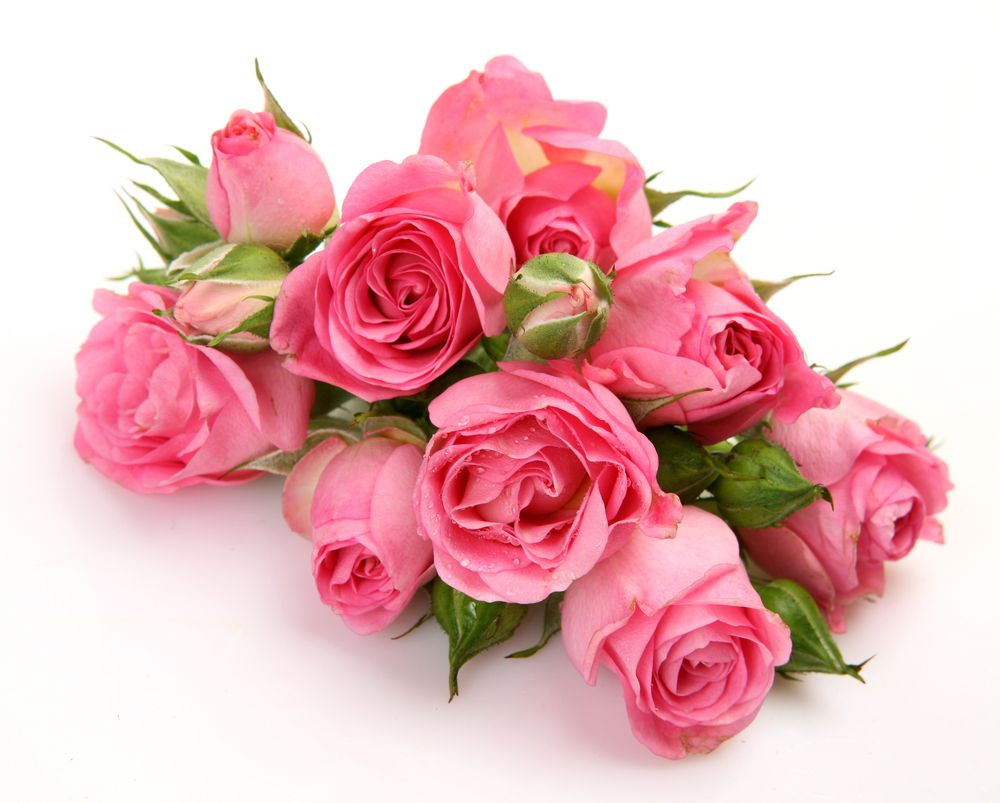 Bouquet of pink roses bouquet of pink more for Bouquets de roses