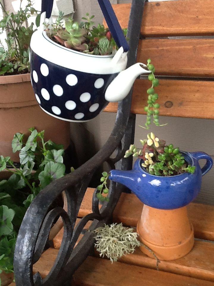 Teapot Succulent Planters Succulants Pinterest