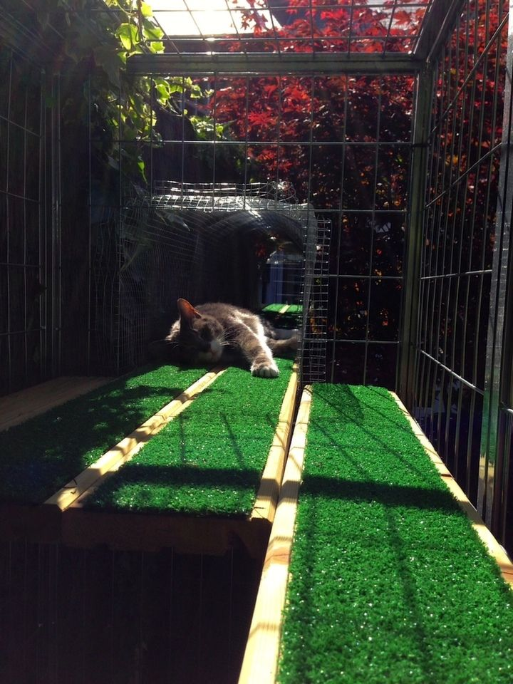 A Garden Catio - Cat Paradise | Ikea 2014, Decking boards and Astroturf