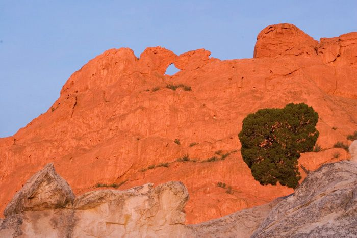 Kissing Camels At Garden Of The Gods Co Springs Where I Would