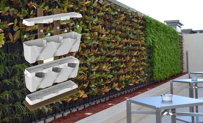 Minigarden: un jardín dentro de tu casa
