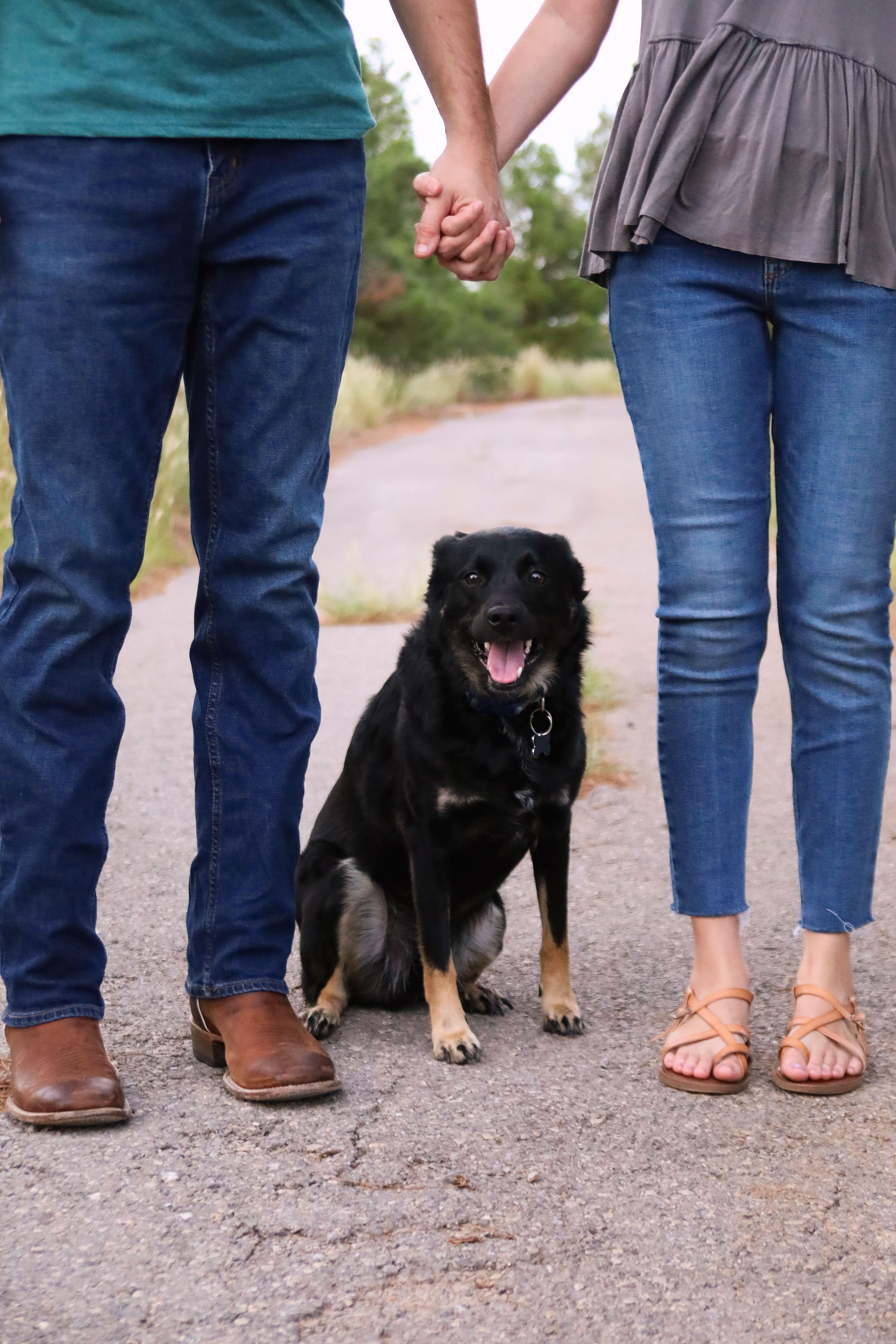 Couple Photos With Dog Photos With Dog Dogs Couple Photos