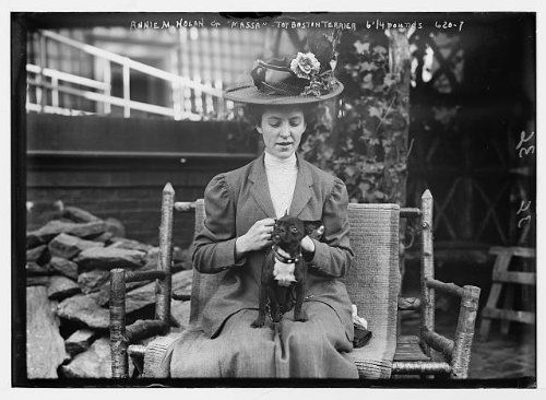 Photo Annie M. Nolan seated with her toy Boston Terrier, Massa 1900 by Vintage Reprints