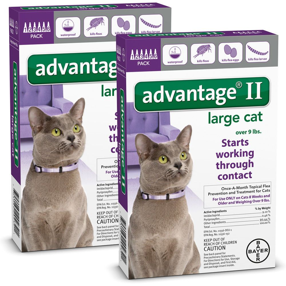 Flea And Tick Remedies 20738 Advantage Ii For Large Cats Over 9