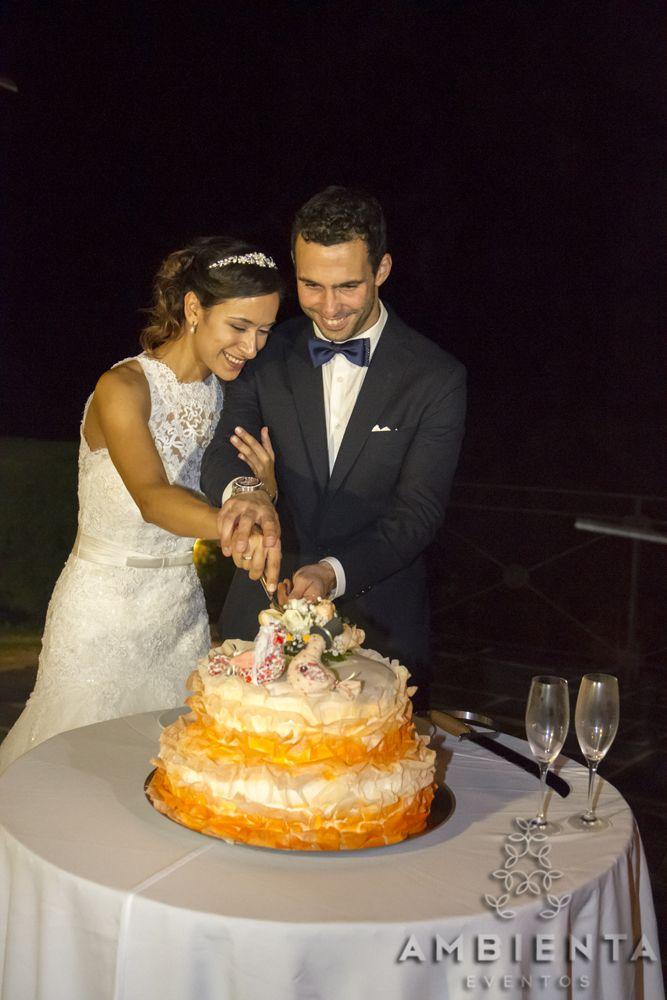 Corte do bolo da Quinta de Alvre