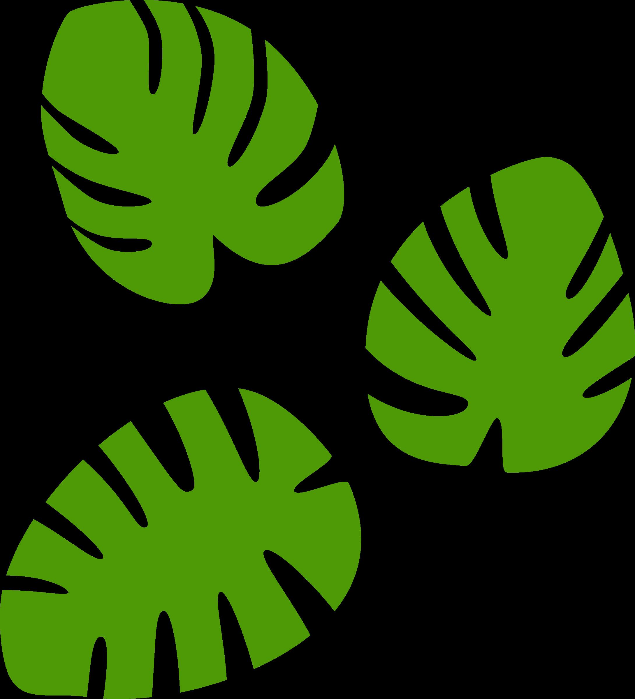 Monstera leaves by spacefem Monstera leaf, Monstera