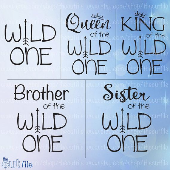 Wild One SVG Family Shirts Bundle First Birthday Svg By TheCutFile