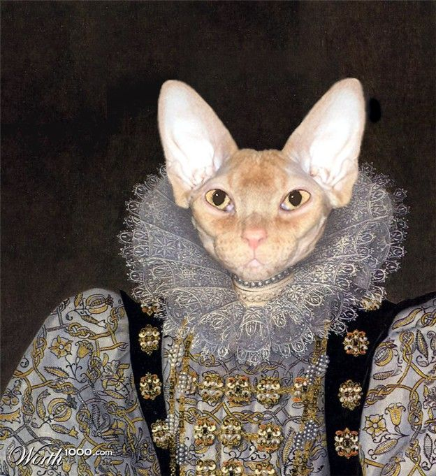 Elizabethan Feline Cat art, Animal paintings, Pet portraits