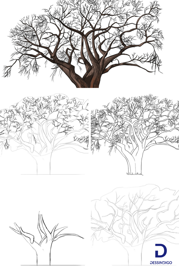 comment dessiner un arbre arbre pinterest dessin. Black Bedroom Furniture Sets. Home Design Ideas
