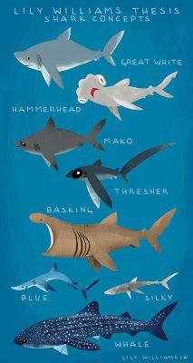 shark finning thesis