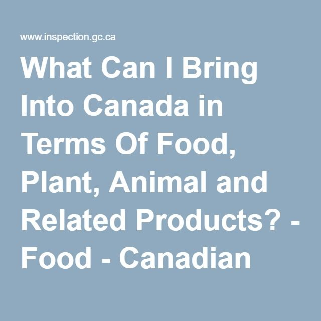 what can i bring into canada in terms of food plant animal and related