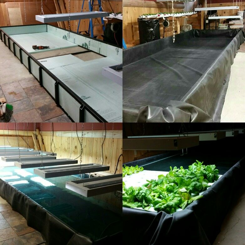 DIY indoor hydroponic floating raft system   hydroponics ... on huge styrofoam raft, aquarium floating raft, aquaponics floating bed, hydroponic floating raft, plastic barrel raft, diy floating raft, commercial hydroponics raft, aquaponics lettuce raft,