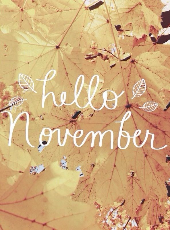 Hello November❤ How Lovely Of You To Bring Such Cozy Weather! Find This Pin  And More On Quotes U0026 Sayings ...