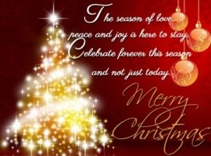 Merry christmas greeting messages merry christmas pinterest merry christmas greeting messages m4hsunfo Image collections