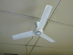 12 Volt Ceiling Fan Ebay Dc Ceiling Fan Ceiling Fan Rv Campers
