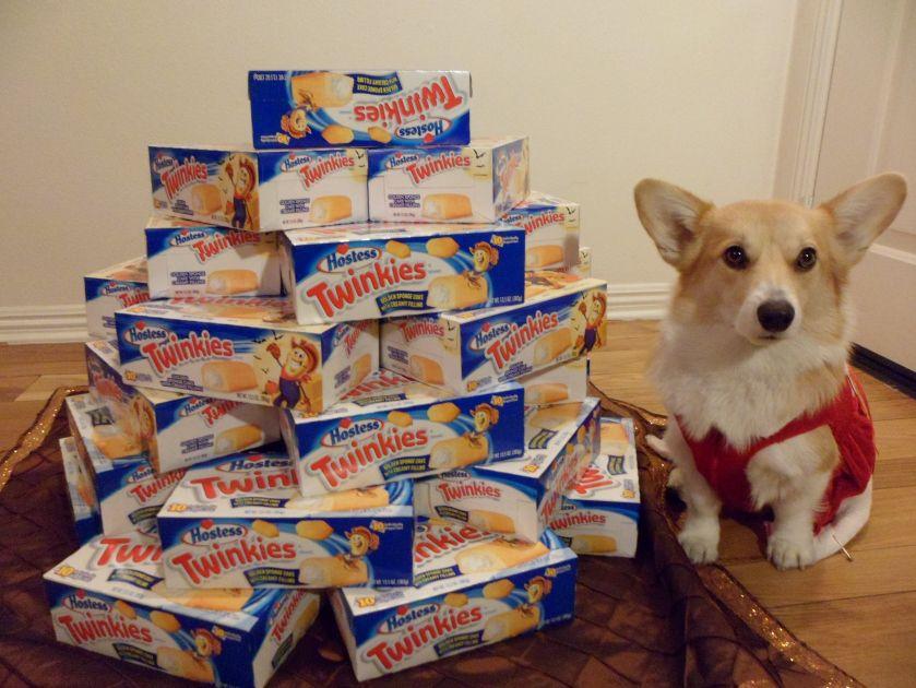MY Twinkies!