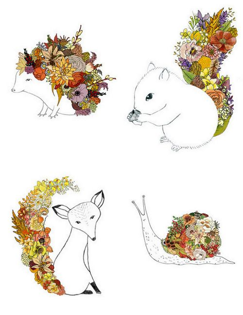 Line Drawing Hedgehog : Animal and flower line drawings drawing pinterest