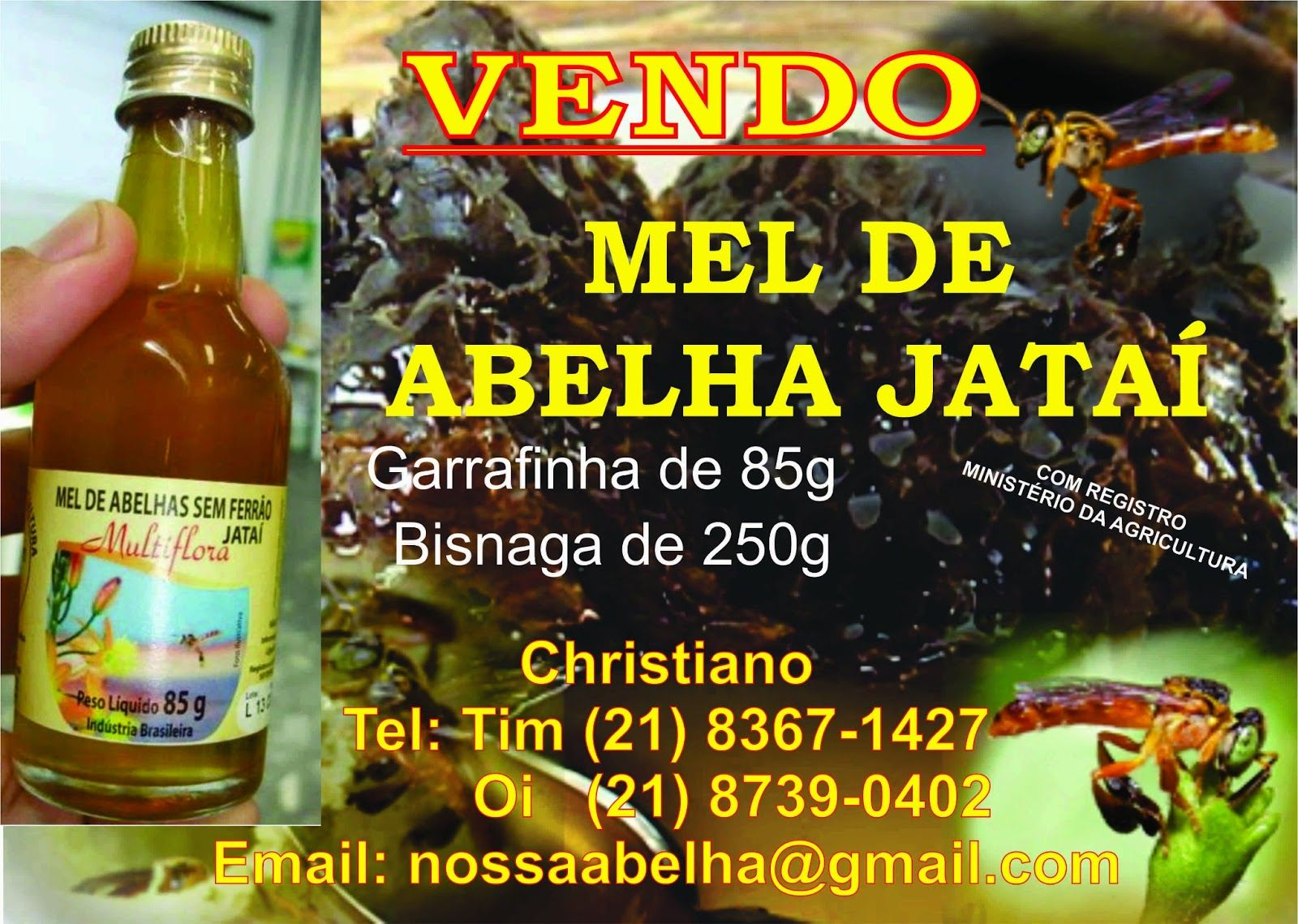 Os Beneficios Do Mel De Abelha Jatai Com Imagens Beneficios Do