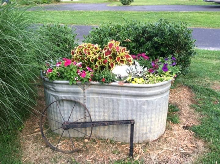 1000 Images About Horse Trough Planters On Pinterest Garden