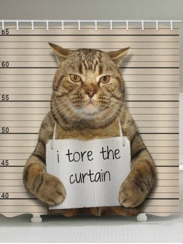 Cat Confession Print Waterproof Shower Curtain Funny Cat Memes Kittens Funny Bad Cats