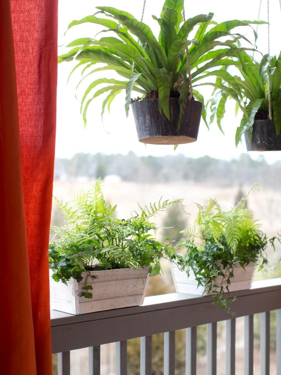 Add Life To Your Covered Porch Or Patio Without Sacrificing Valuable Square Footage With Low Maintenance Hanging Plants Here Ferns A Layer Of