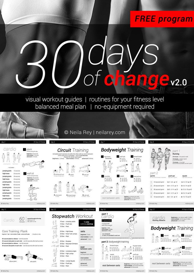 no equipment 30 day workout program workouts pinterest workout