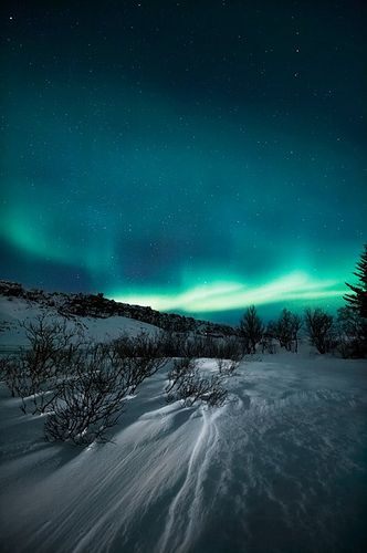 Aurora Borealis by Steinar Hugi Northern lights at Thingvellir national…