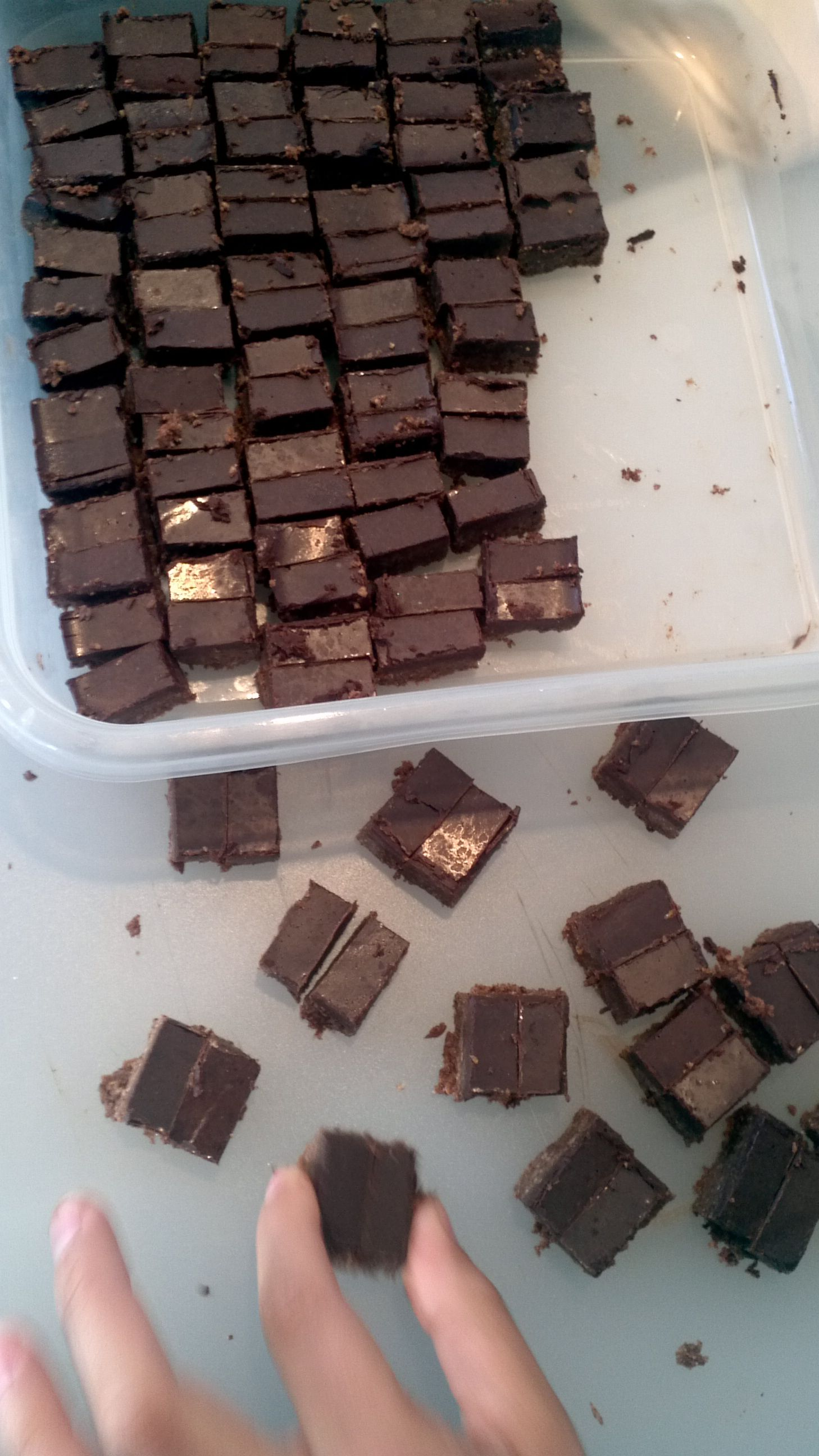 Chocolate Almond Protein Bars from Maximized Living
