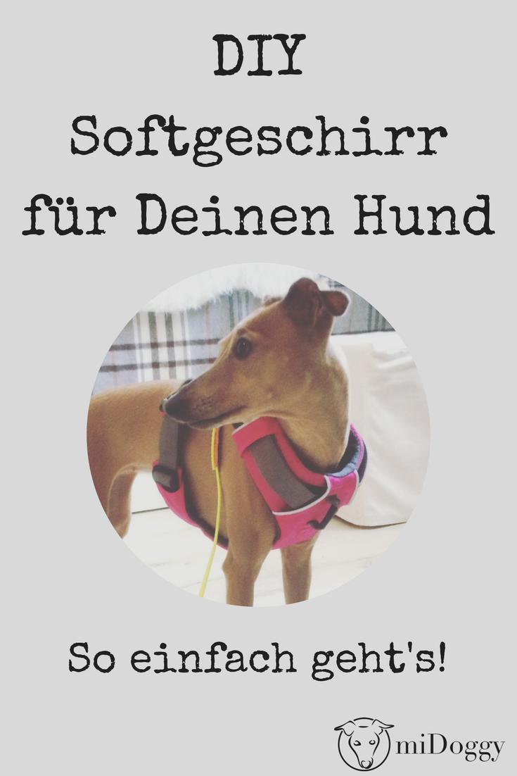 DIY - Softgeschirr für Hunde selbst nähen | Softgeschirr, Geschirr ...