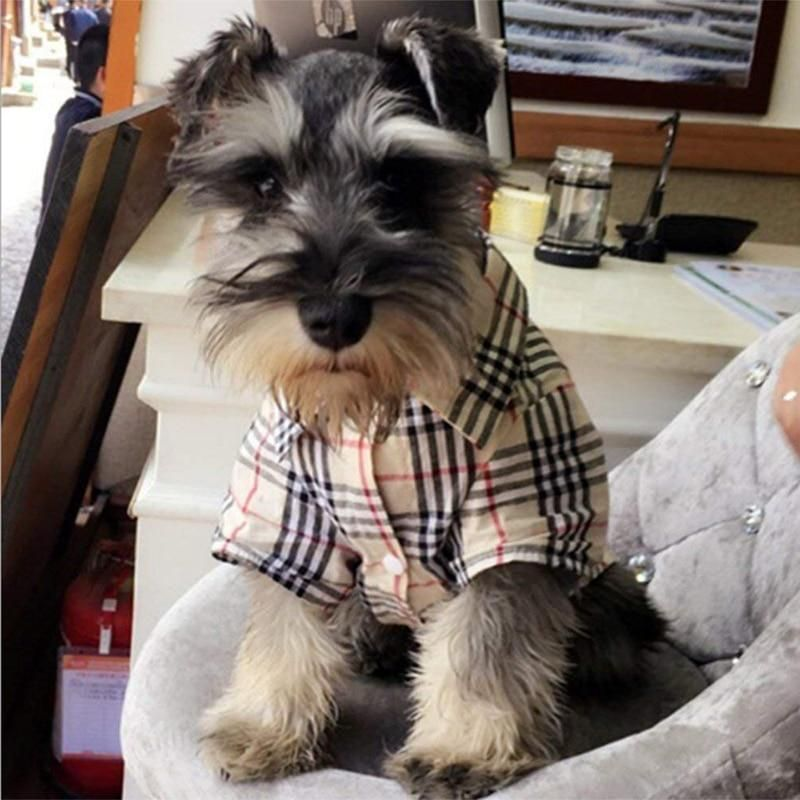 Furberry Dog Shirt In 2021 Dog Shirt Dog Clothes Up Dog