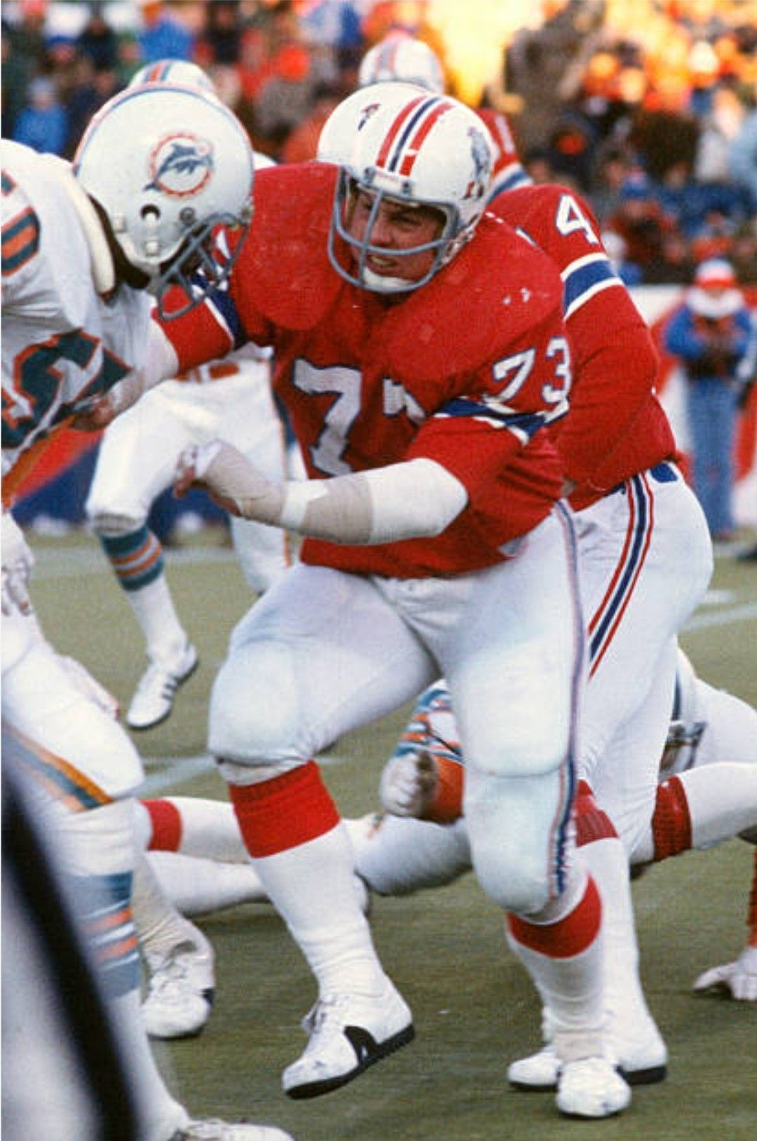 Hog Hannah, 1979 Dolphins at Patriots Patriots football