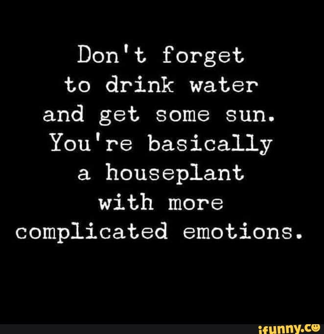 Don T Forget To Drink Water And Get Some Sun You Re Basically A Houseplant With More Complicated Emotions Ifunny Water Quotes Emotions Positive Quotes
