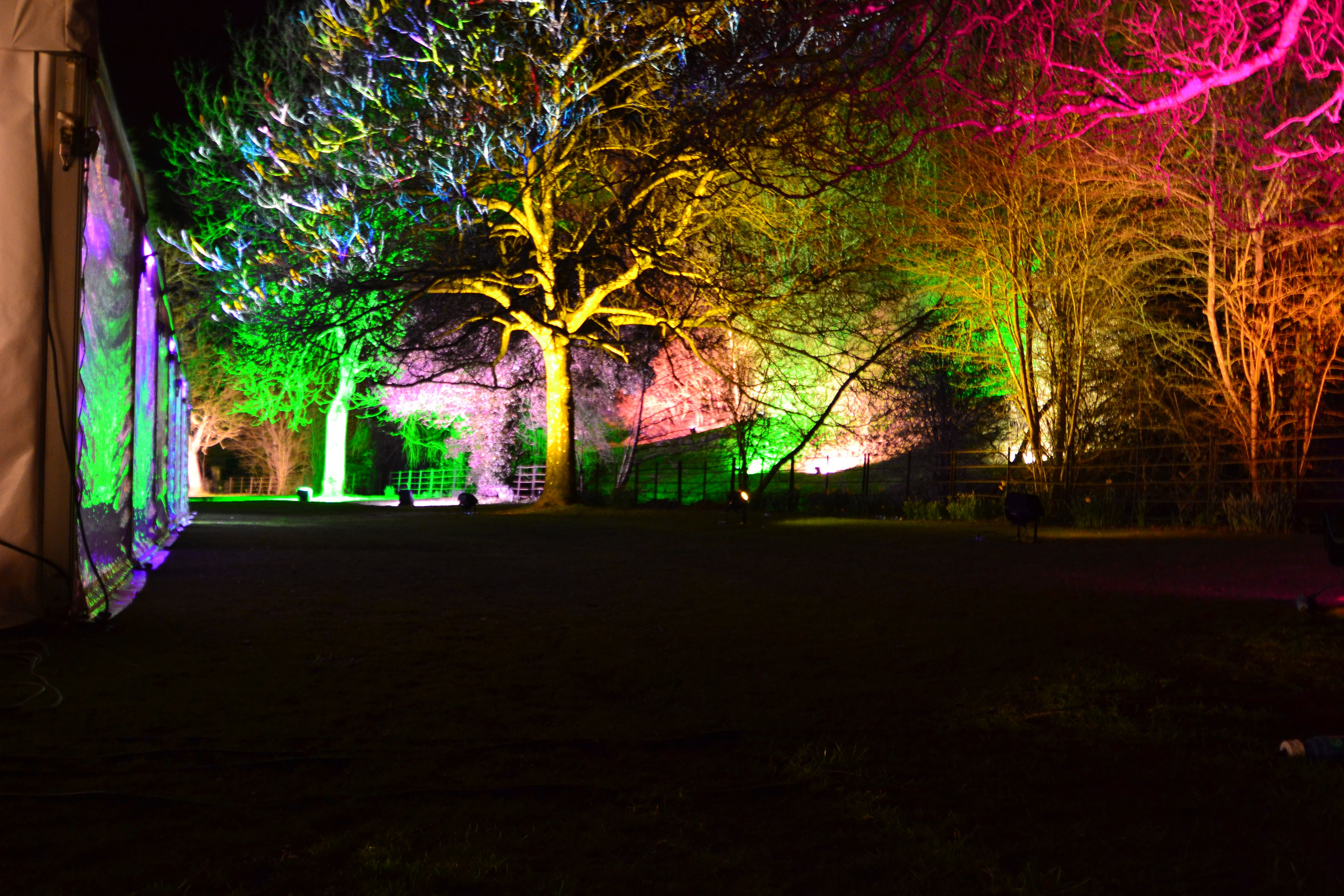Light the trees with our stunning outdoor lighting and huge range or light the trees with our stunning outdoor lighting and huge range or colours aloadofball Image collections