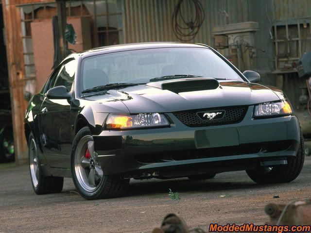 3 I Highland Love Green Dark 041 Car Bullitts This Only Mustang