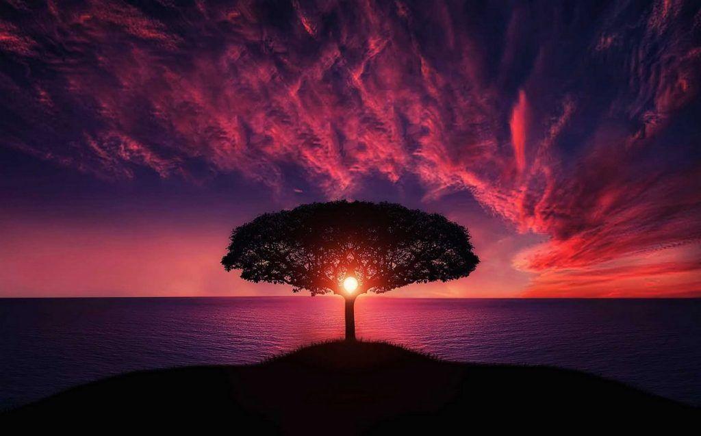 اجمل خلفيات شاشة للكمبيوتر واللاب توب بجودة عالية Hd Tecnologis Beautiful Sunset Sunset Sun