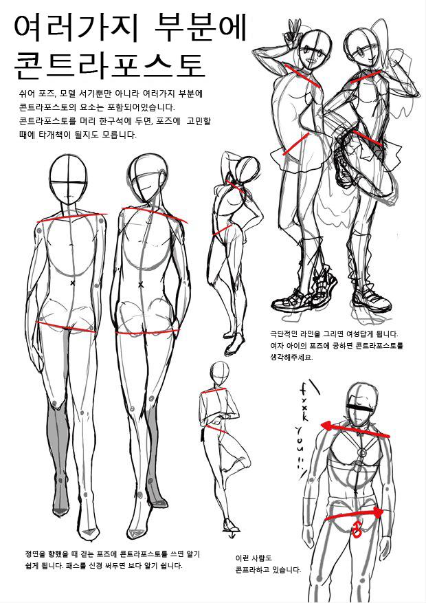 G Daum Pinterest Anatomy Pose And Draw