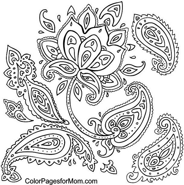 Paisley Coloring page 5 | Projects to Try | Bordado, Dibujo floral ...
