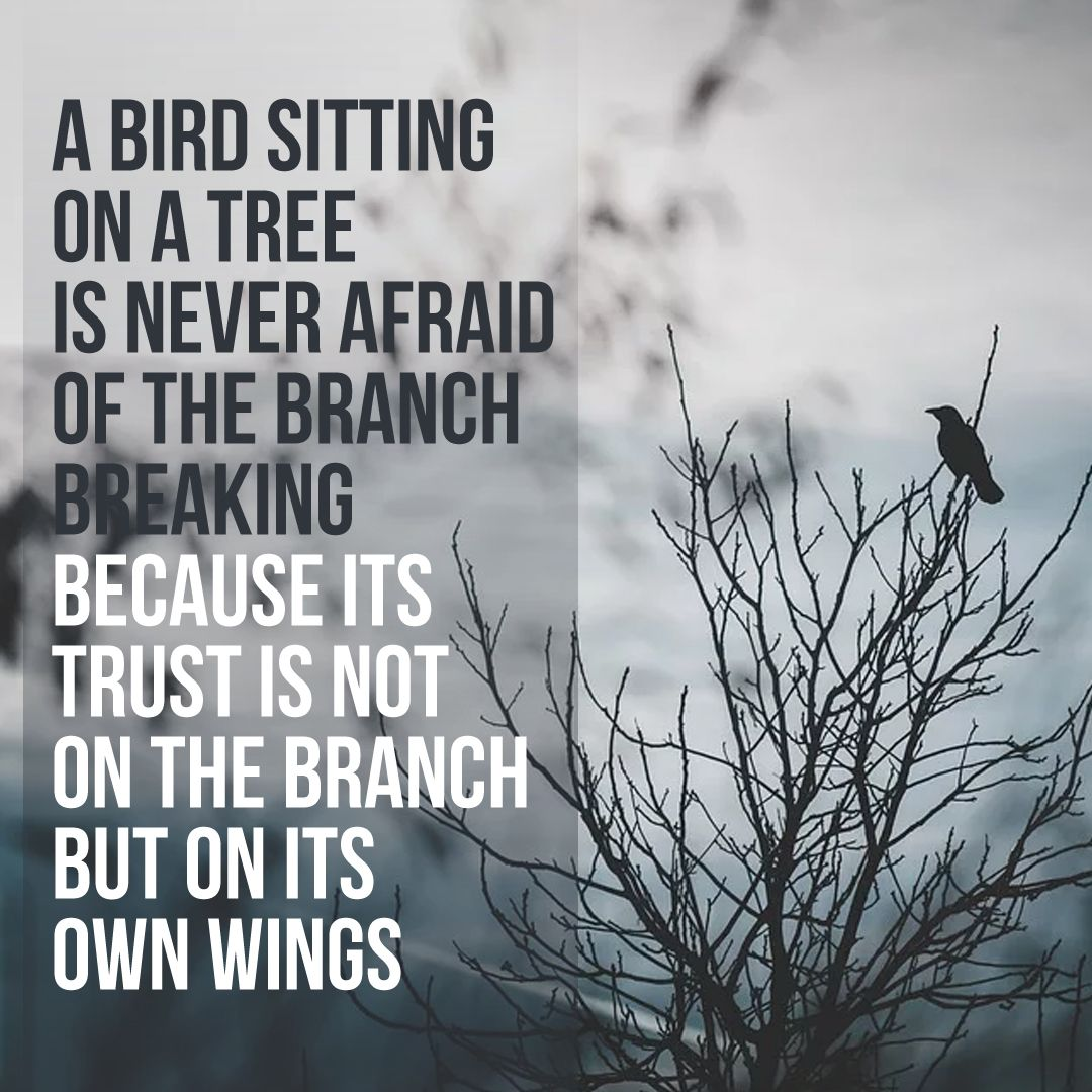 A bird sitting in a tree is never afraid of the branch breaking... |  Uplifting quotes, Words of encouragement, Positive words